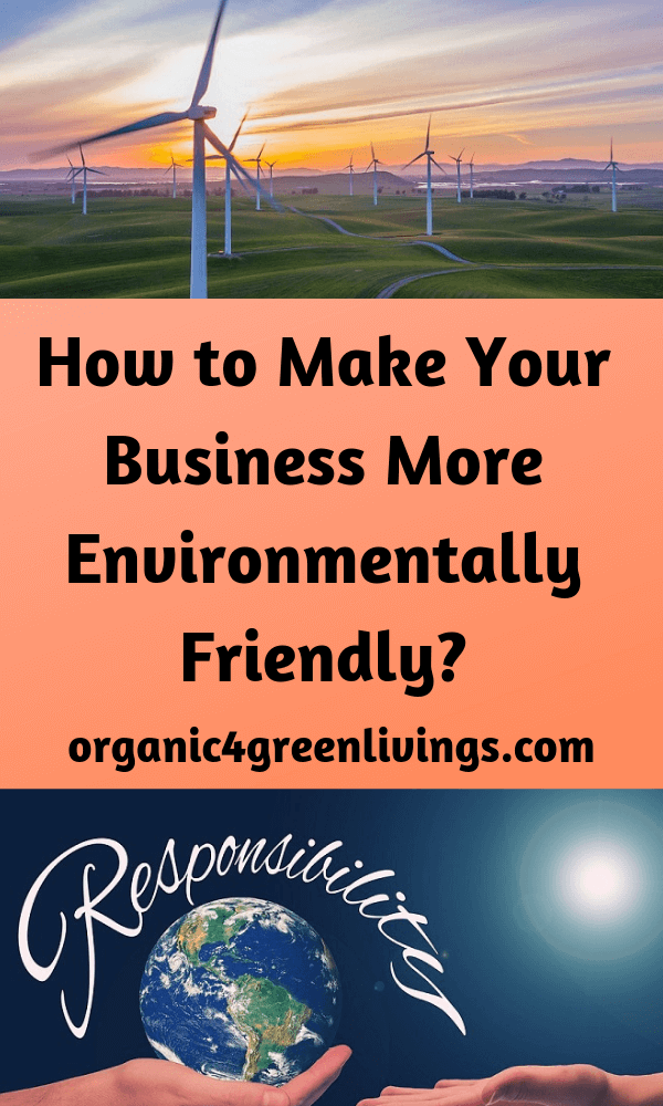 environmentally friendly business