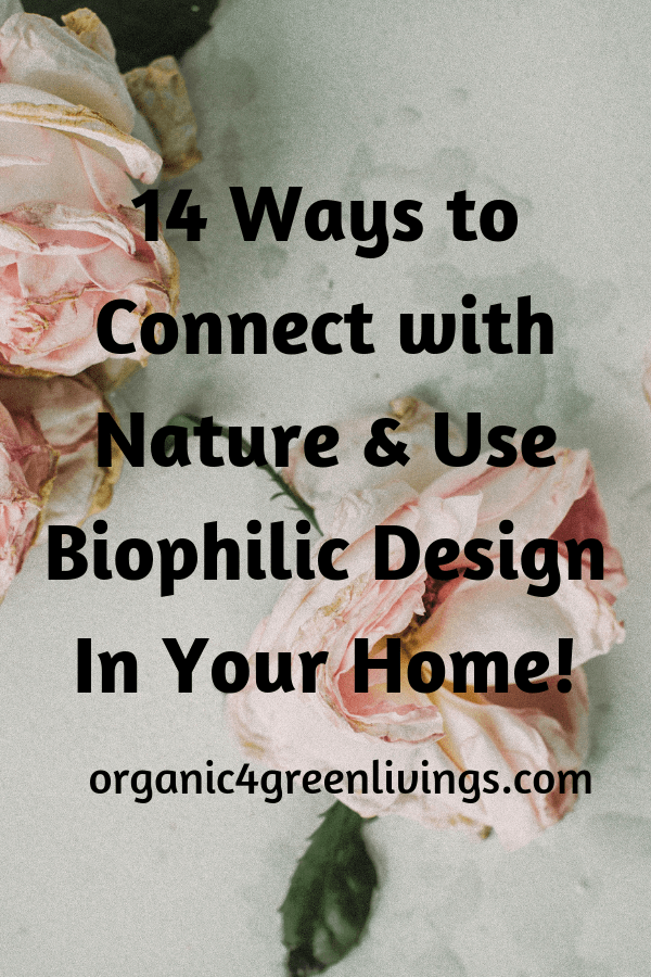 biophilic design in your home