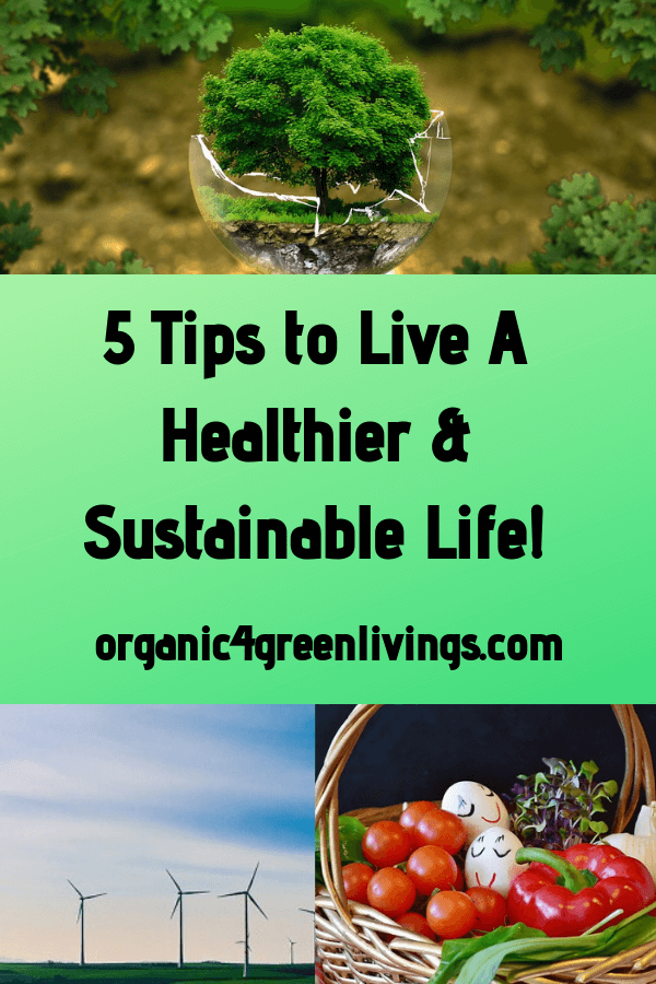 how to live a sustainable life