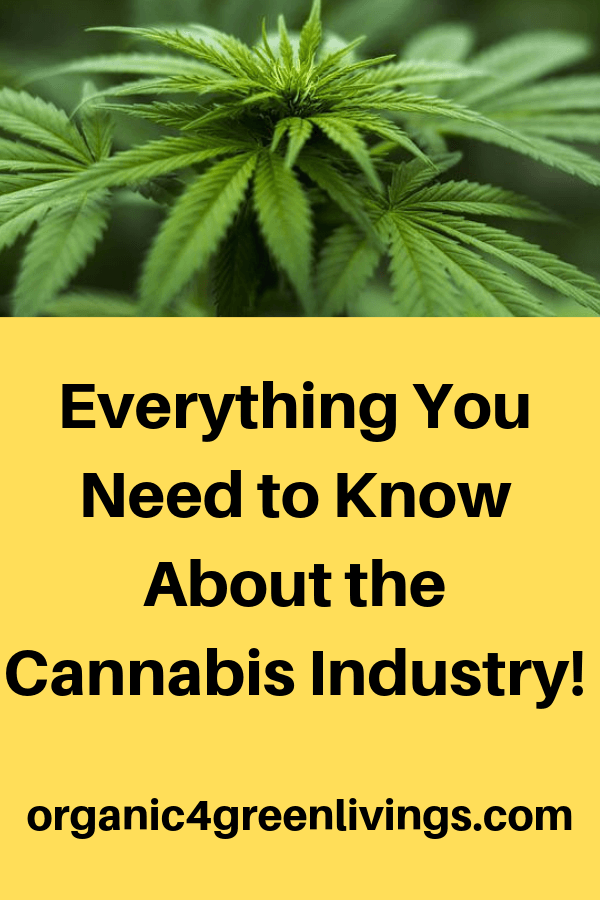 stats and facts about cannabis industry