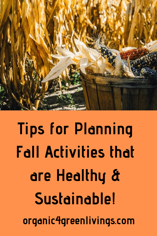 tips for planning sustainable fall activities